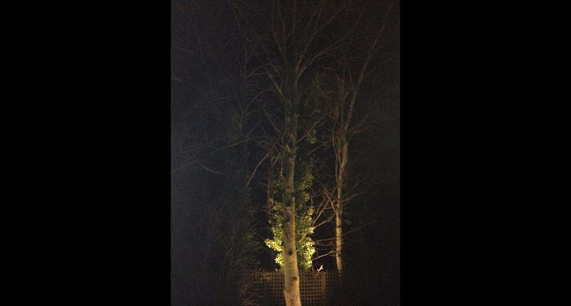 derby-garden-lighting-4