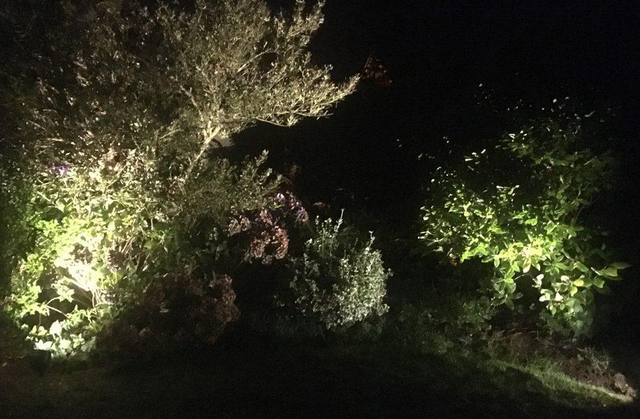 alderley-edge-garden-lighting